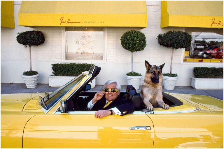 mc curry voiture jaune chien