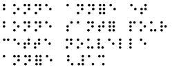 bonne annee en braille