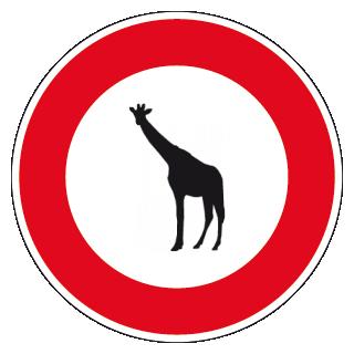 interdit aux giraffes